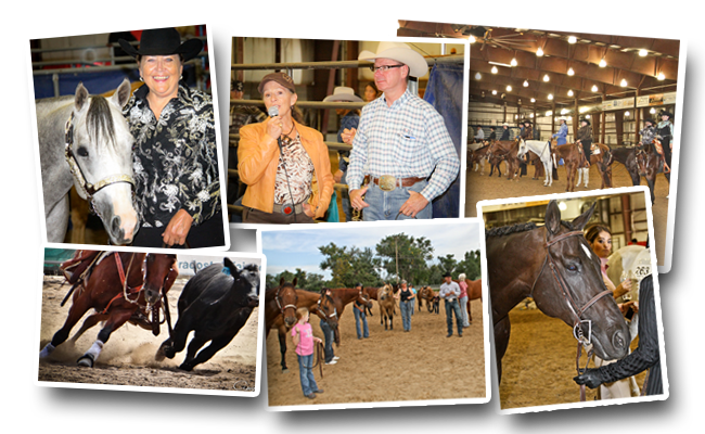 CENTRAL STATES FAIRGROUNDS RAPID CITY SOUTH DAKOTA SEPTEMBER 15-18, 2016.  Offering 2 full pointed AQHA shows; Championship Classes offer buckles and prizes through 10th.